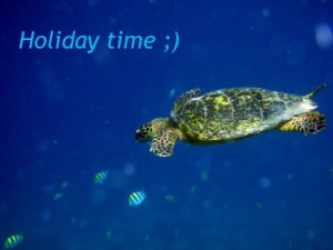 holiday_time